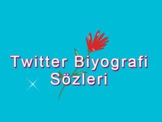 Twitter Biyografi Sözleri