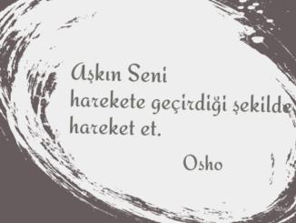 Osho Özlü Sözleri